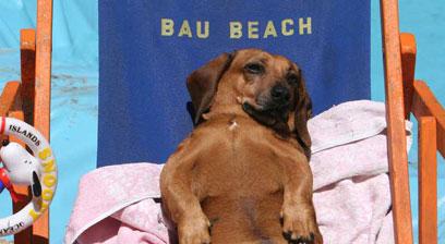 bau-beach2